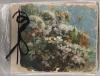 Foto des Original Blütenlese-Albums von Selma, das heute als Archivstück in Israel verwahrt wird